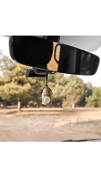 Bubble Gum FRXV03 Areon Fresco Car Air Freshener